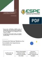 Convención Ramsar Convenio de Basilea