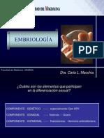 EMBRIO(1)