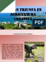 Armando Nerio Guedez Rodríguez - Hainan Triunfa en Agricultura Creativa