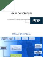 Mapa Conceptual Sinave