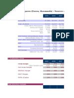 INVESTAURA Financial Ratio Template