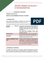 descomposicio termica de sales y su estequiometria.docx
