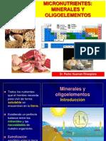 3 TERCERA CLASE Micronutrientes I