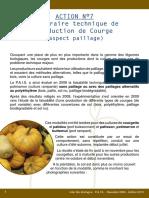 BrochureLegumes2009_Ed2010_Courge