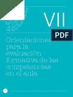 Curriculo-nacional-2017 Cap VII Orientaciones Evaluación