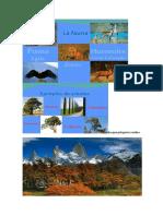 Biomas Argentina