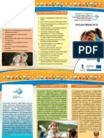 Projektbemutató brosúra