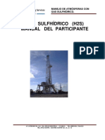 Gas Sulfhidrico h2s Manual Para Participante