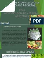 microbiologia de verduras acostadas