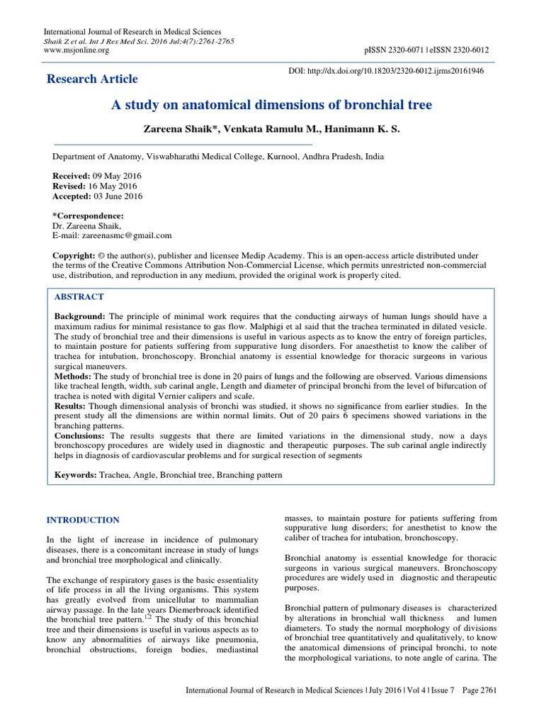 A Study On Anatomical Dimensions Of Bronchial Tree Lung Respiration