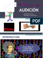 AUDICIÓN diapos