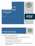 Setting Up an Internal Audit Program