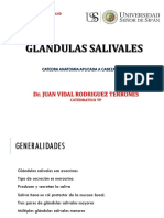 9. GLANDULAS SALIVALES