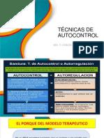 TECNICAS DE AUTOCONTROL.pdf