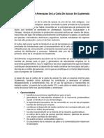 Oportunidades y Amenazas de La Caña de Azúcar en Guatemala