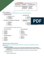 Antibioticos clasificacion