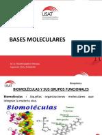 Bases moleculares.pdf