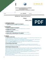 Guía de Informe de Trabajo IB