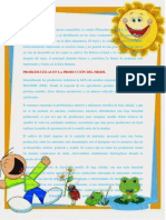Documento Mip 2