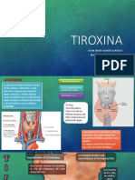 Tiroxina y GT
