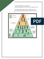 La Estructura de Las Clases Sociales en La Edad Media