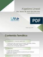 Algebra Lineal-Determinates y Matrices 4.4_2017 (2)