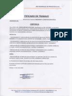 Certificado Irving (1)