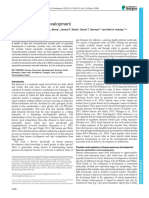 Human Pancreas Development