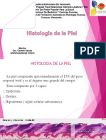 histologiadelapiel-160511082150