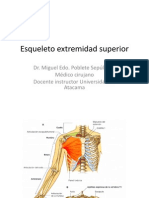 esqueletoextremidadsuperior-100417222015-phpapp02