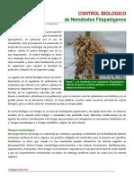Biocontrol de Nematodos Fitopatogenos