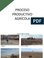 procesodeproduccindepapa-120108204402-phpapp01