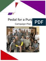 ymca campaign plan
