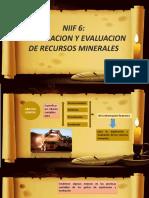 NIIF_6[1].pptx