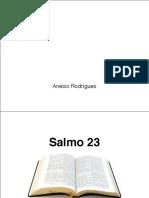 Salmo 23 a Cura Para a Ansiedade