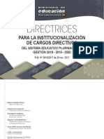 Directrices Institucionalizacin Cargos FIN