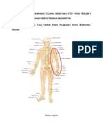 Gambarjah Bahagian Tulang Sendi Dan Otot
