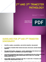 USG Trimester 2 & 3 Patologis