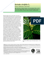 7. morinda_species_profile.pdf