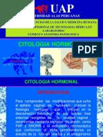Citologia Hormonal Uap - Jrd-srl 2017 (2)