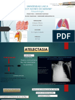 fisiopatologia tuberculosis prs.pptx