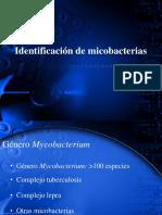 Practica de Micobacterias y Agentes Fisicos