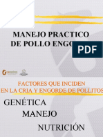 Manejo Pollo y Ponedoras