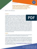 Efectos de La Adopción Homoparental Sobre El Desarrollo Integral Del Niño, Niña o Adolescente en Colombia