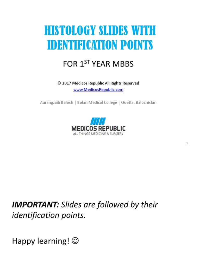 1st Year MBBS Histology Slides and Identification Points