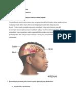 Cedera Atau Trauma Kepala