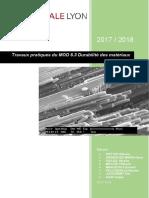 Rapport de TP Durabilité Des Matériaux