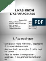 biokim.pptx