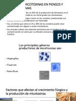 Principales Micotoxinas en Piensos y Materias Primas