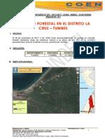 Incendio Forestal en El Distrito La Cruz-tumbes
